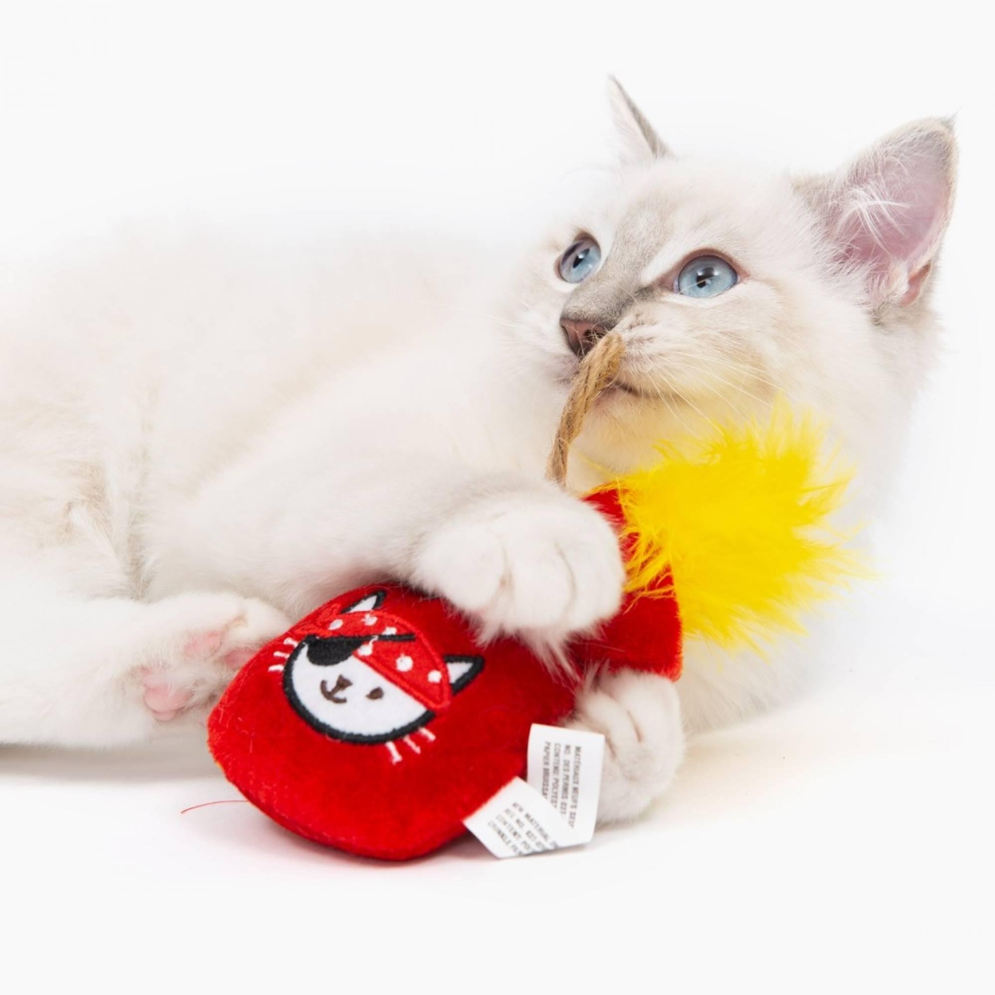Catit 42483 Cat Pirate Catnip Toy Gold Pouch