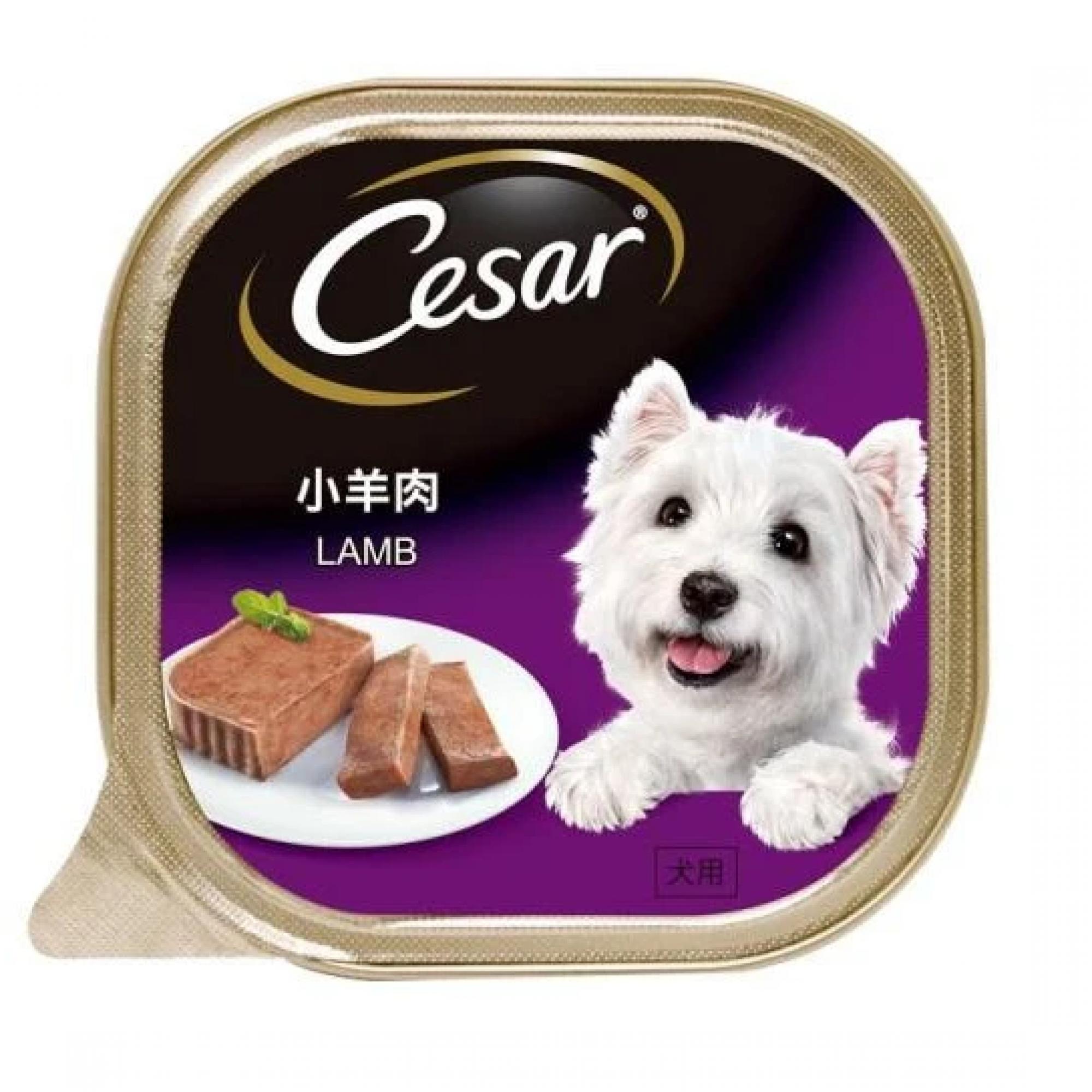Cesar - Lamb Pate Dog Food 100g
